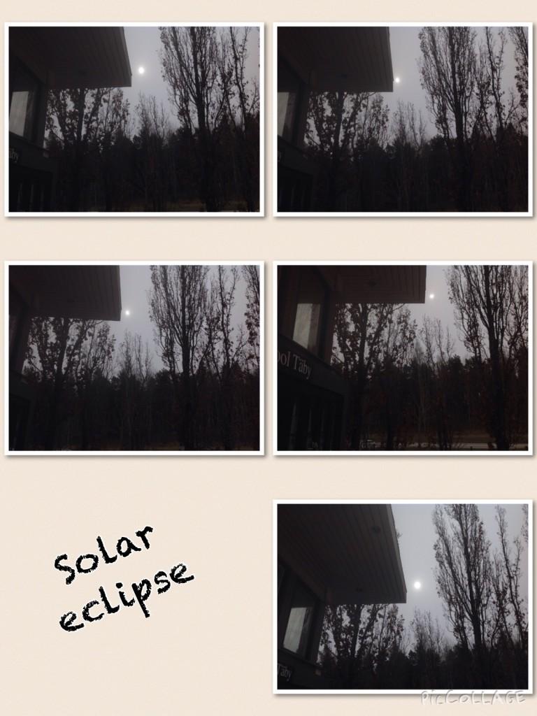 image11-768x1024-jpg